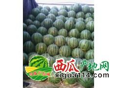 2017年云南德宏盈江县西瓜代办产地批发价格行情