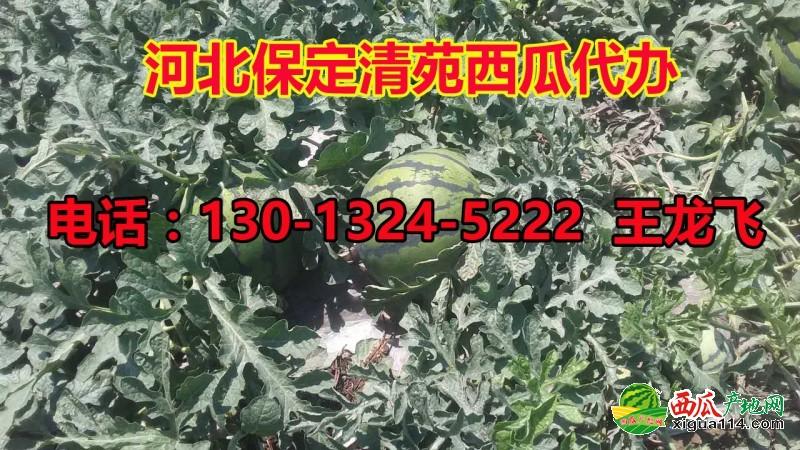 微信图片_20124234115132