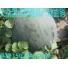陕西大荔无籽西瓜基地黑无籽花无籽西瓜产地价格便宜了