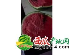 广东省东莞市下桥水果批发市场西瓜代卖