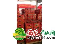 东莞市长征果品贸易有限公司代销、配送水果