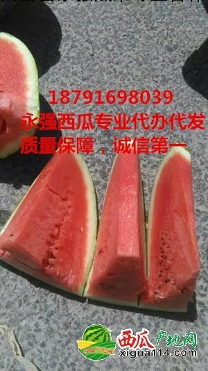 京欣西瓜图一