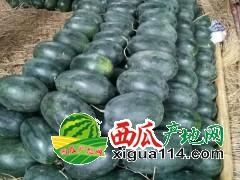 广西海吉星水果批发市场