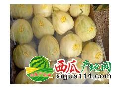 供应辽宁凌海西瓜代办产地大棚甜王西瓜 12斤起步