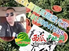 辽宁新民甜王西瓜大量上市中