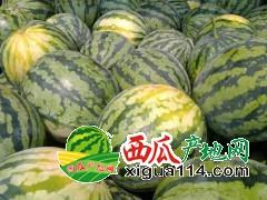 广西甜王西瓜代办【广西崇左西瓜代办】