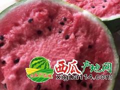 开封哪里的西瓜最好最便宜又好吃/开封西瓜代办