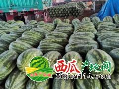 2020年缅甸西瓜多少钱瑞丽畹町市场,云南西瓜代办咨询