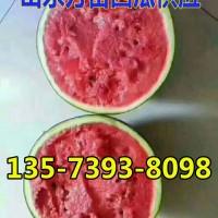 山东甜王西瓜产地13573938098